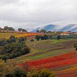 Sapori d'autunno in Umbria, Foligno