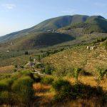 I sentieri nella fascia olivata in Umbria