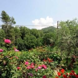 Agriturismo Casa Brunori | Foligno, Umbria