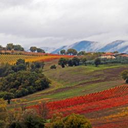 Sapori d'autunno in Umbria!