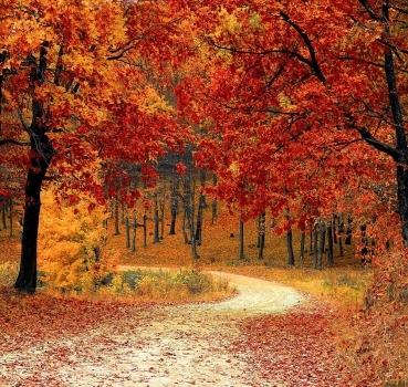 Sapori d'autunno in Umbria