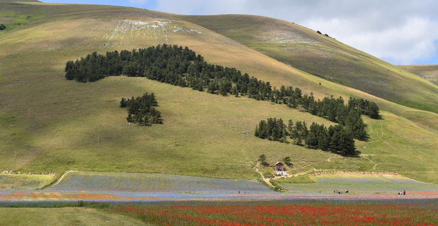 Offerta estate 2021, immersi nel cuore verde dell'Umbria