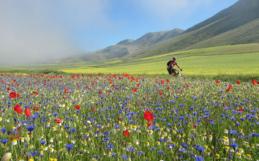 Scoprire l'Umbria in E-Bike